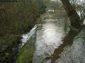 The Thames pours over the path