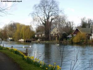 The River at Staines